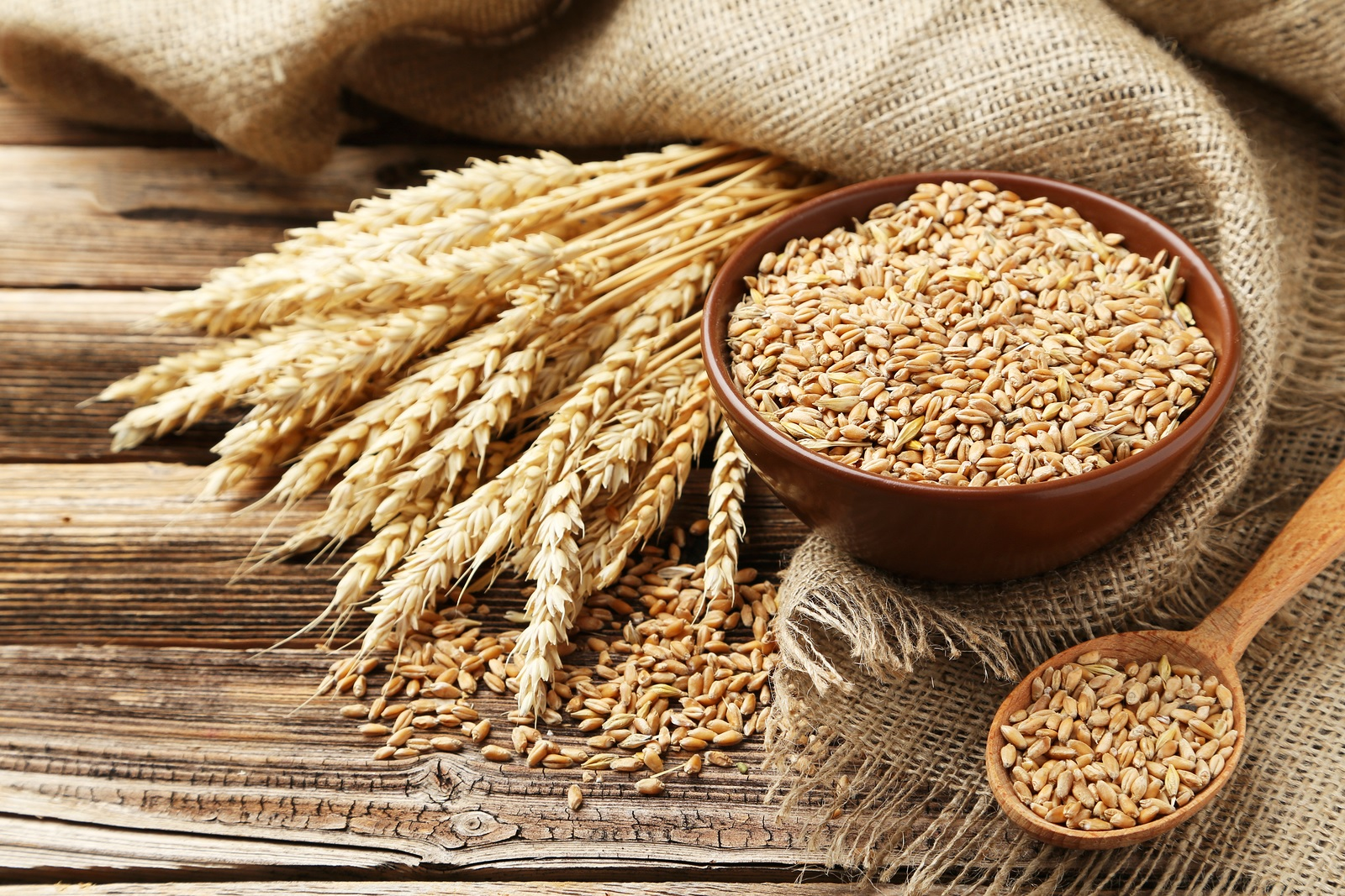 Откупната цена на пченицата до 10,5 денари за килограм